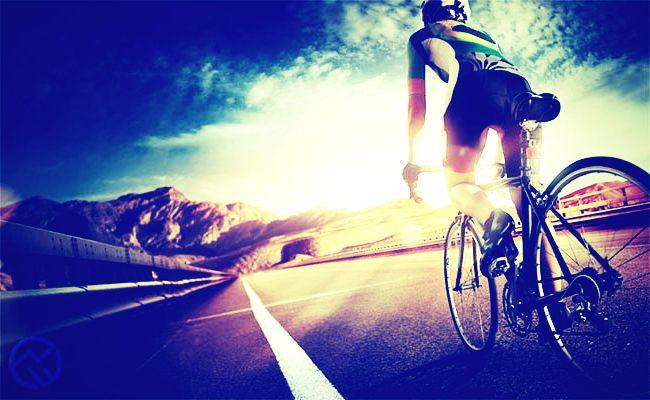 culotte de ciclismo corto del 2019