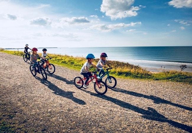 bicicletas de carrefour y el corte inglés